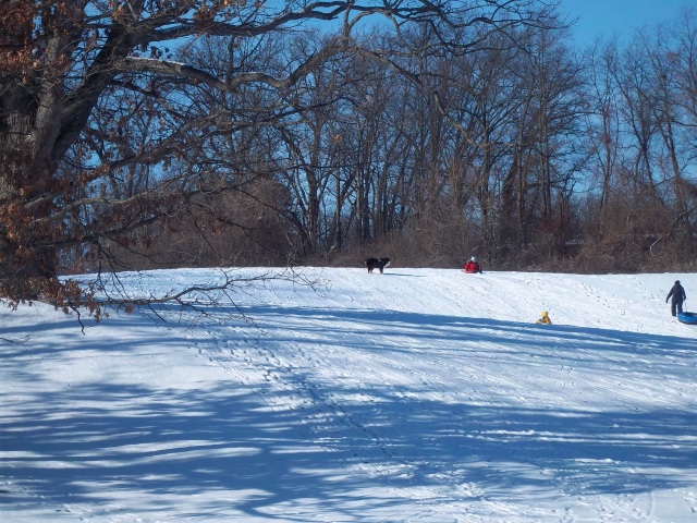 winter outdoor sport
